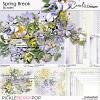 cwx-spring-break-bundle