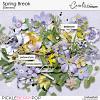 cwx-spring-break-el