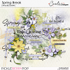 cwx-spring-break-artsy