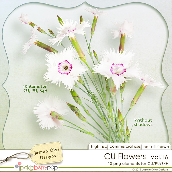 CU Flowers Vol.16 (Jasmin-Olya Designs)