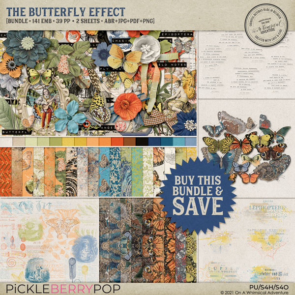 The Butterfly Effect Bundle