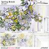 Spring Break-Bundle