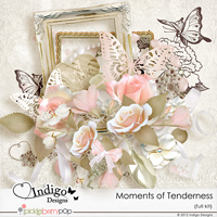 Moments of Tenderness Full kit