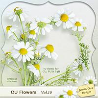 CU Flowers Vol.10 (little camomiles)