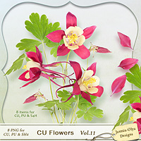 CU Flowers Vol.11 (Jasmin-Olya Designs)