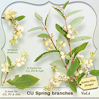 CU Spring branches Vol.4 (spirea) (Jasmin-Olya Designs)