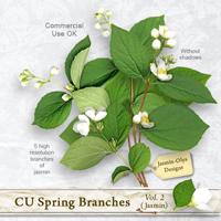 CU Spring Branches Vol.2 (Jasmin)