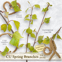 CU Spring branches Vol.3 (birch)