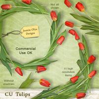 CU Tulips