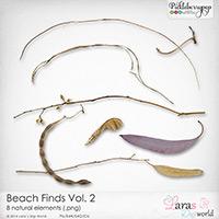 CU Beach Finds Vol. 2