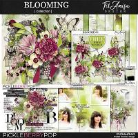 Blooming ~ Bundle Plus Free Gift