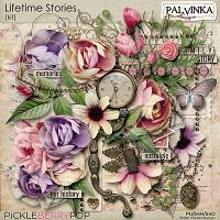 Lifetime Stories Kit