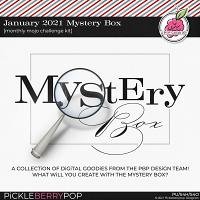 January 2021 Mystery Box