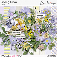 Spring Break-Kit