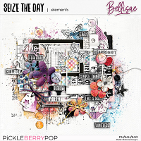 SEIZE THE DAY   elements by Bellisae