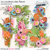 La couleur des Fleurs (embellishments) by Simplette