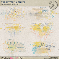 The Butterfly Effect Typographic Bits