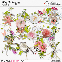 Way to Happy-Clusters