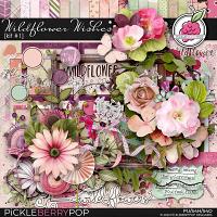 Wildflower Wishes: Kit #1