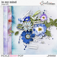 in my mind-Add on