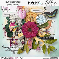 Burgeoning, A Berry Blends Collab Kit
