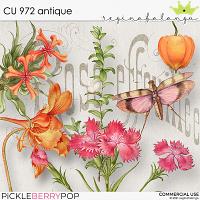 CU 972 ANTIQUE