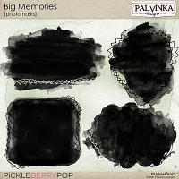 Big Memories Photomasks