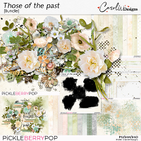 Those of the past-Bundle