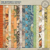 The Butterfly Effect Patterned And Artsy Papers