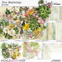 New Beginnings-Bundle