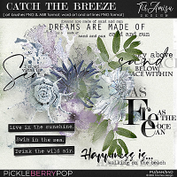 Catch The Breeze ~ brushes and word art