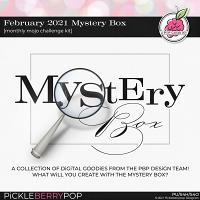 February 2021 Mystery Box