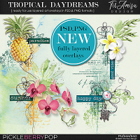 Tropical Daydreams ~ Fully Layered  Art Overlays