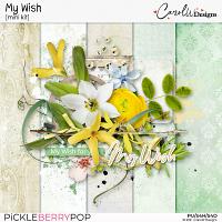 My Wish Mini Kit
