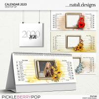2020 Calendar Table Quick Pages Czech