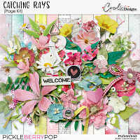 Catching Rays-Page Kit