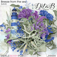 Breeze from the sea - full kit