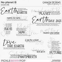 No planet B  - word art
