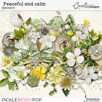 Peaceful and calm-Elements