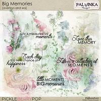 Big Memories Overlays and WA